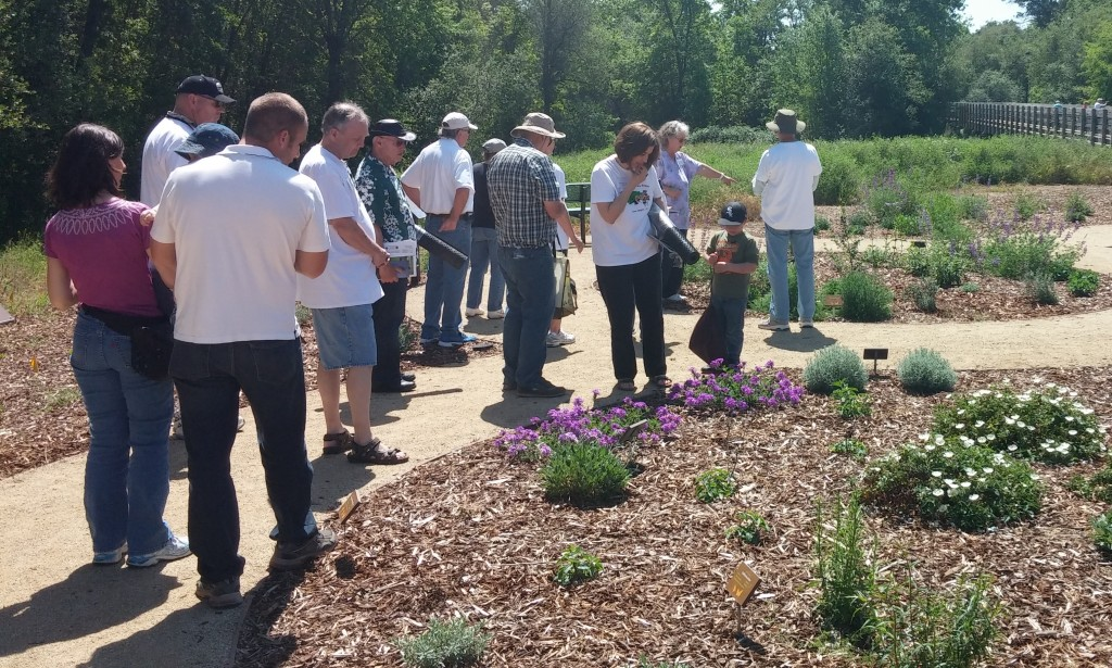 Attendees taking a closer look during a guided tour of the Ranch's drought-demonstration garden.