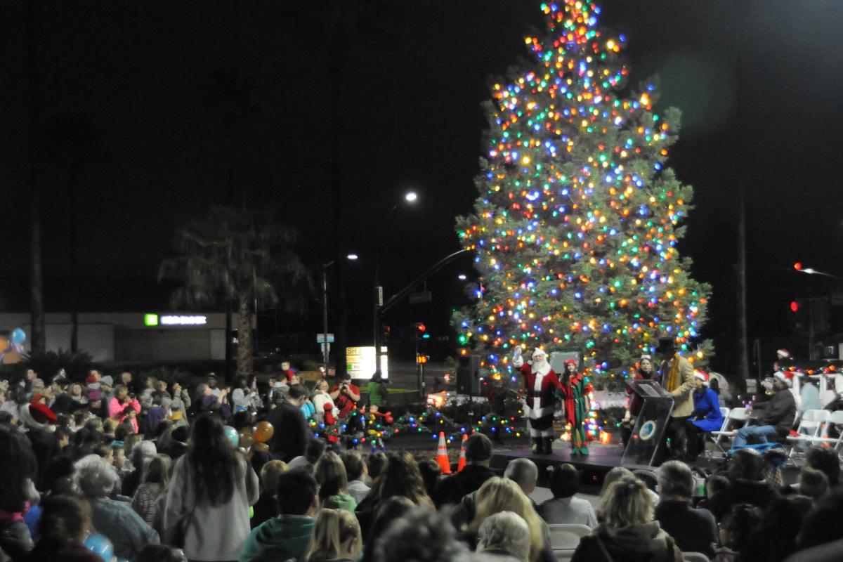 Christmas Tree Citrus Heights