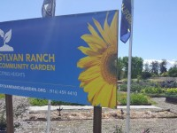 Sylvan Ranch Community Garden is located at the corner of Sylvan and Stock Ranch roads in Citrus Heights.