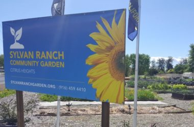 Sylvan Ranch Community Garden