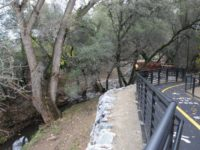 Arcade Creek Park Preserve in Citrus Heights, file photo. // CH Sentinel