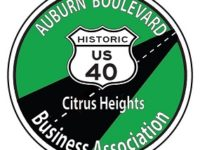 Read all 31 action items planned for Auburn Boulevard