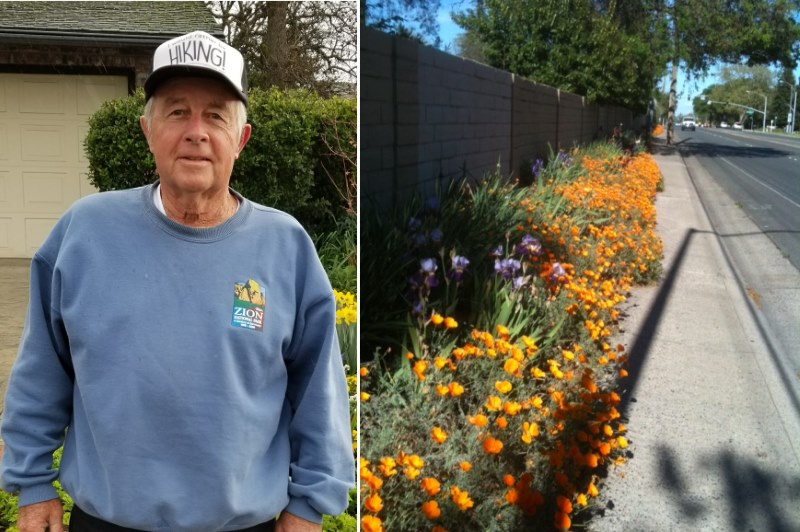 Ron Fern, flowers, Citrus Heights