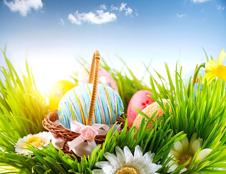 1380f9915 Hop in for some fun at JCPenney s Easter Egg Hunt in the Kids Department on  the second floor! Easter baskets are located in the Kids Department