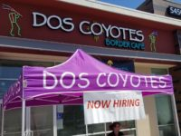 A woman sits under a canopy on Friday seeking job applicants for the new Dos Coyotes restaurant set to open in Citrus Heights next month. // CH Sentinel
