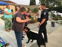 Neighbors and police socialize during National Night Out in Citrus Heights, on Aug. 7, 2018. // Stacey Hanks