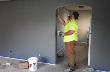 Painter, house flip