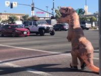 Citrus Heights police deployed a costumed dinosaur on Tuesday as part of a traffic safety operation. // Image credit CHPD