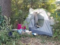 File photo, a 72-hour notice posted next to a homeless camp off Mariposa Avenue in Citrus Heights. // CH Sentinel