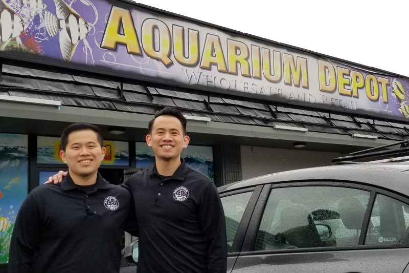 Aquarium Depot, Citrus Heights