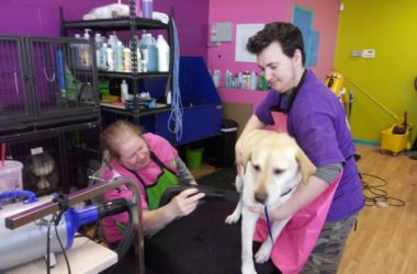 Fuzz Monsters Pet Grooming, Citrus Heights