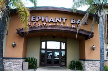 Elephant Bar, closed