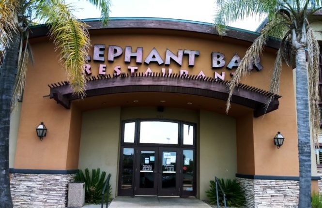 Elephant Bar, closed